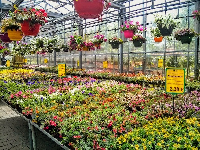11 Awesome Stores to Buy Gardening Supplies in Düsseldorf