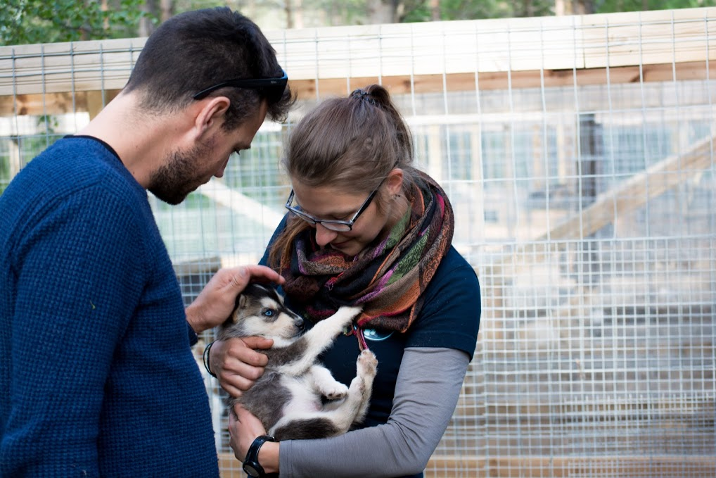 Is it REALLY Worth Getting Pet Health Insurance in Germany?